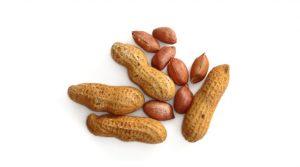 Saat Diet, Kacang Tanah Baik Untuk Dikonsumsi