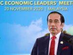 Presiden RI Joko Widodo hadiri TT APEC 2020