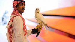 Harga Fantastis dan Pecahkan Rekor Dunia, Elang Termahal Terjual 6,5 Milyar di Riyadh