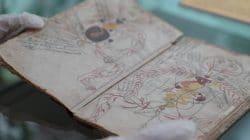 Perpustakaan Umum King Abdulaziz Dapatkan Manuskrip Medis Islam Abad Ke-8 Hijriyah